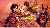 Catwoman fights Lady Shiva
