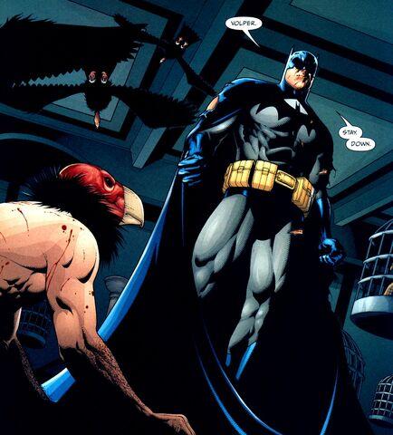 File:Batman 0355.jpg