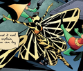 Tiger Moth II 0001