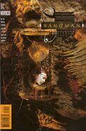Sandman Vol 2 64