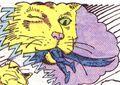 PG's cat 07
