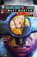 Suicide Squad Most Wanted Deadshot and Katana Vol 1 3
