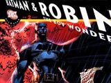 All Star Batman and Robin, the Boy Wonder Vol 1 2