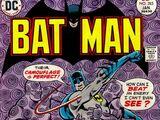 Batman Vol 1 283