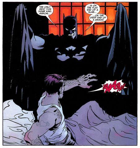 File:Batman 0495.jpg