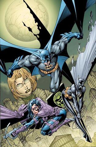 File:Batman 0498.jpg