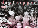 Daytripper Vol 1 5