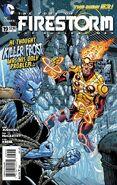Fury of Firestorm Vol 1 19