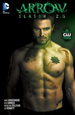 Cover for the Arrow: Season 2.5 Trade Paperback