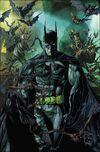 Batman Vol 2 1 Variant Textless