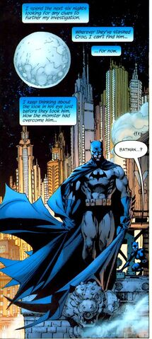File:Batman 0269.jpg