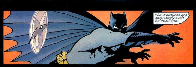File:Batman 0509.jpg