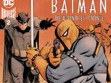 Batman: The Adventures Continue Vol 1 2