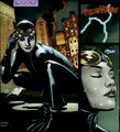 Catwoman 0127