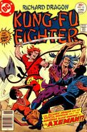 Richard Dragon Kung-Fu Fighter Vol 1 15
