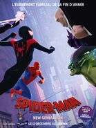 Spider-Man Into the Spider-Verse French Heroes vs Villains Poster
