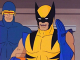 Wolverine (Productions Universe)