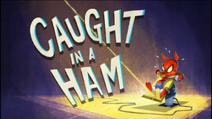 Caught in a Ham
