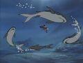 Sharks Circle Namor Invisible Woman.jpg