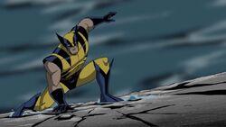 Wolverine Superhero Landing AEMH