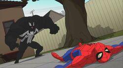 Venom Knocks Down Spider-Man SSM
