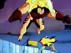 Sabretooth Leaps Over Wolverine Into Abyss