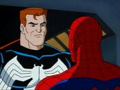 Spider-Partners