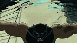Panther Rips Kleiser UA2
