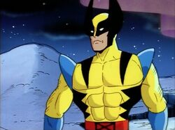 Wolverine Yellow Arms Mistake