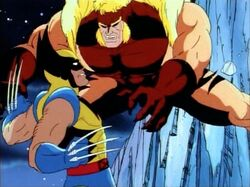 Sabretooth Leaps On Wolverine Canada Battle