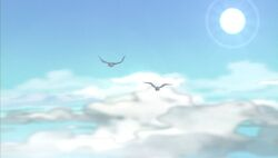 Birds Flight SMTNAS