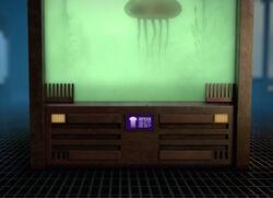 Jellyfish BNS