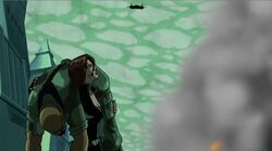 Widow Spots Plane UA2