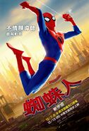 Spider-Man Into the Spider-Verse Spider-Peter Chinese Poster
