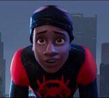 Miles Morales (Sony Universe)
