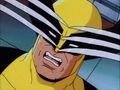 Wolverine Struggles to Keep Claws Away.jpg