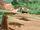 Jeep Wakanda Footsteps.jpg