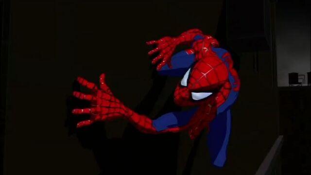 File:Spider-Man SMTNAS.jpg