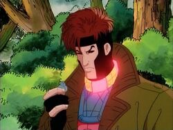 Gambit Inhibitor Collar