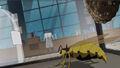 Yellowjacket Insect AEMH.jpg