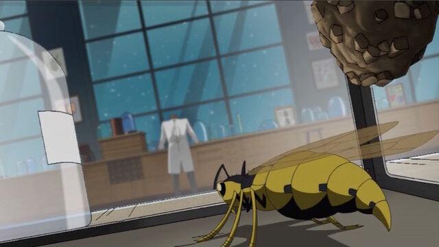 File:Yellowjacket Insect AEMH.jpg