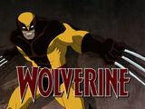 Wolverine (Marvel Universe)