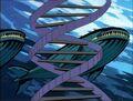 Humpback Whales DNA.jpg