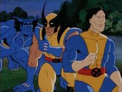 Beast Wolverine Conspire Against Morph