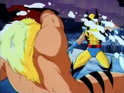 Sabretooth Blinds Wolverine With Snow