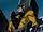 Yellowjacket AEMH.jpg