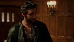 Wolverine-204