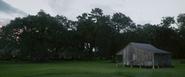 Louisiana (1995)