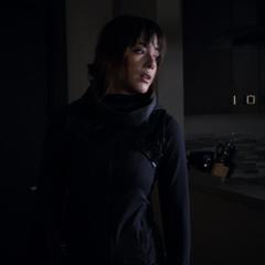 Skye se embarca en el rescate de Raina.