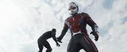 CW Ant-Man 21